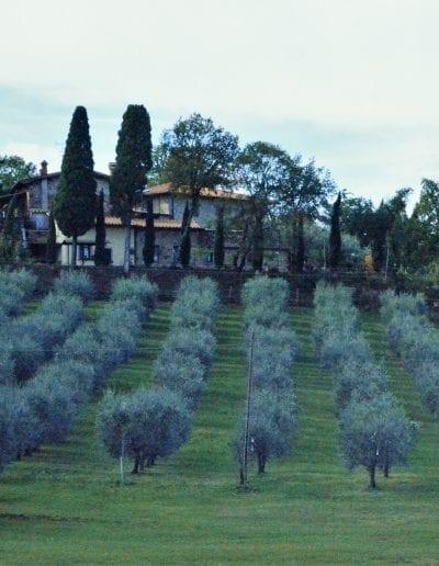 Oleoteca, Mugello - Tuscany destinations