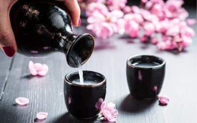 18 Unique Sake Sets From Japan & Sake Drinking Guide