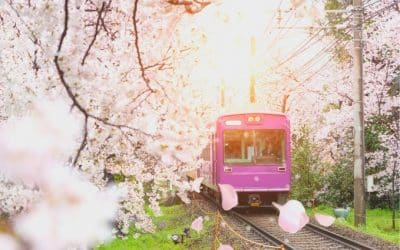 Ultimate Japan Rail Pass Guide 2021 – Easy, Step By Step