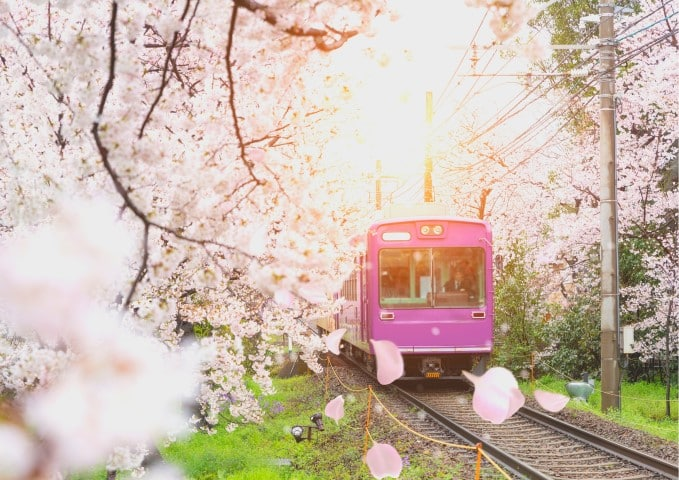 Ultimate Japan Rail Pass Guide 2020