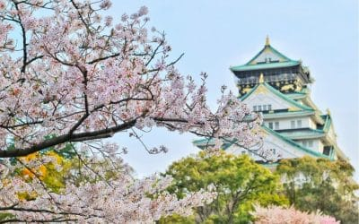 25 Best Books About Japan to Read Before Traveling to Japan