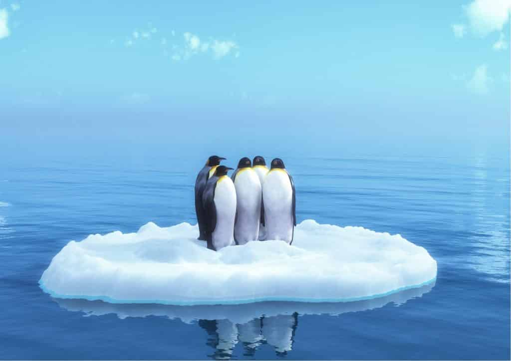 Best books about Antarctica - books set in Antarctica - Antarctica books