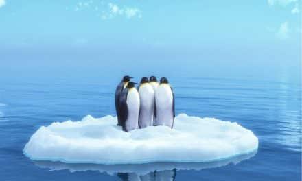 26 Best Books About Antarctica