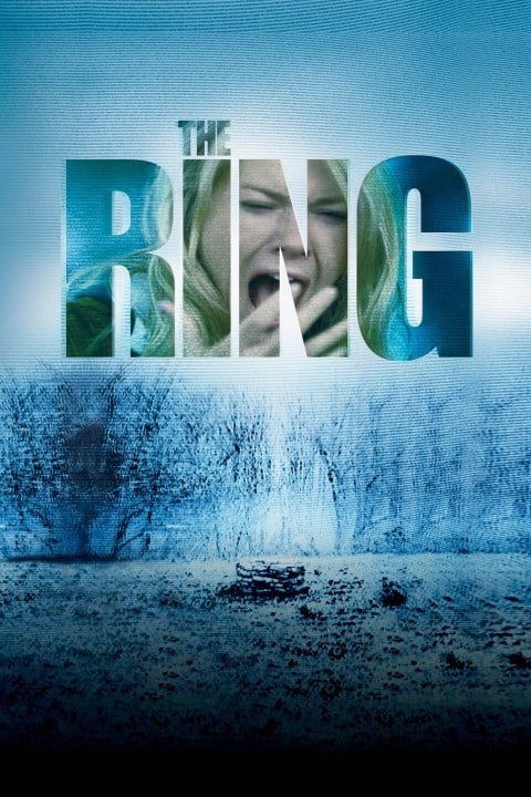 halloween thriller movies - The Ring Horror, Thriller (Small)