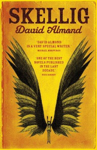 Skellig by David Almond angel books