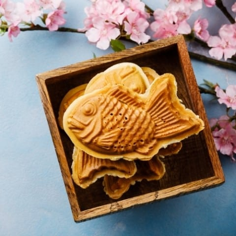 Guide to the best Japanese snacks for foodies - Asiana Circus foodie recipes and guides