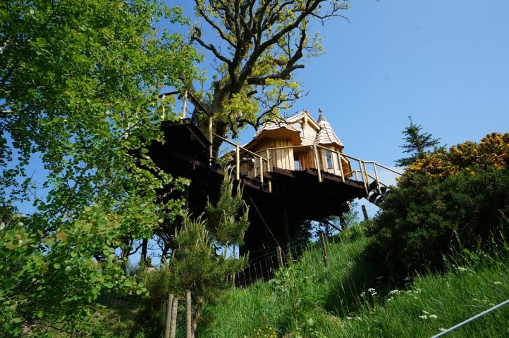 The Tree Howf, Treehouse Glamping in Braco, Scotland (Small)