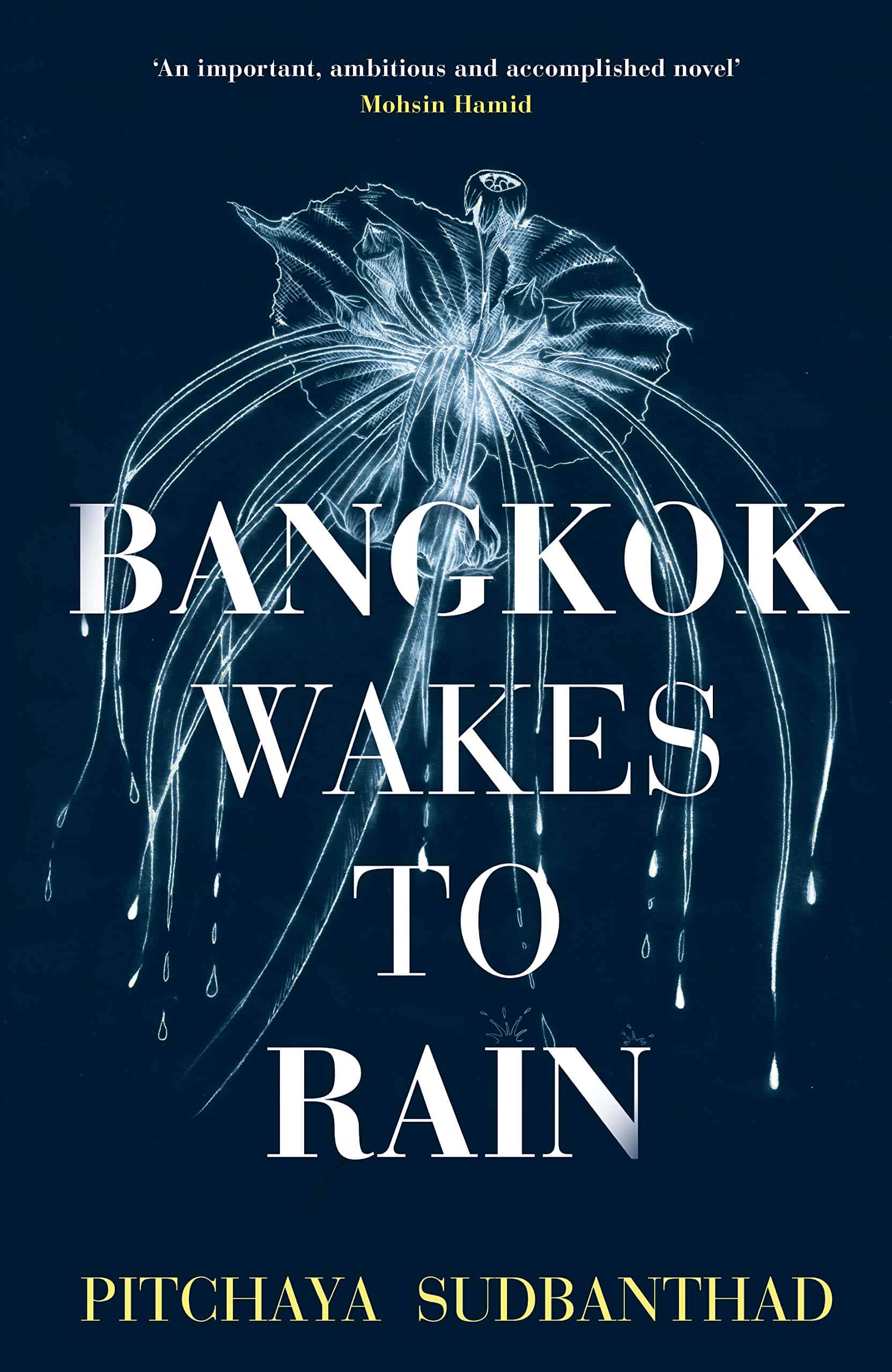 Bangkok Wakes to Rain by Pitchaya Sudbanthad - best Thai books set in Thailand