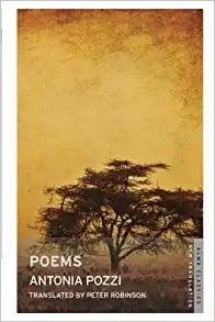 Antonia Pozzi - italian poems of love by female italian poet (Small)