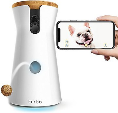 Dog Treat Dispenser & Camera - dog travel esseentials for summer