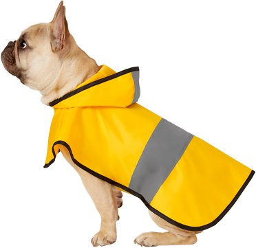 Frisco Rainy Days Dog Raincoat - dog travel essentials for summer