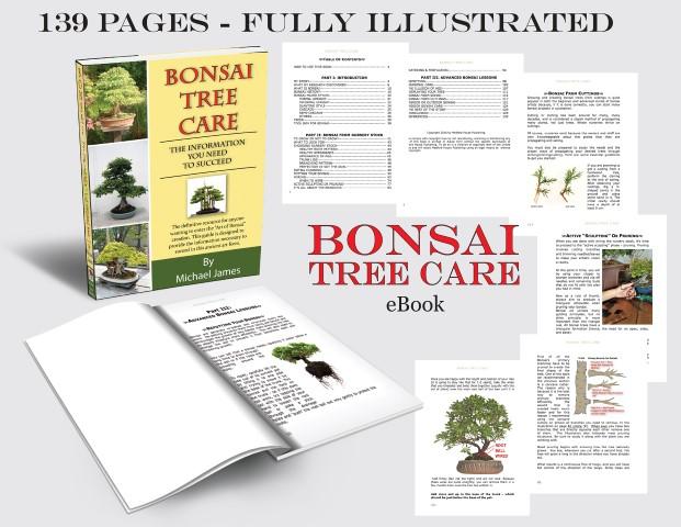 Bonsai tree care ebook