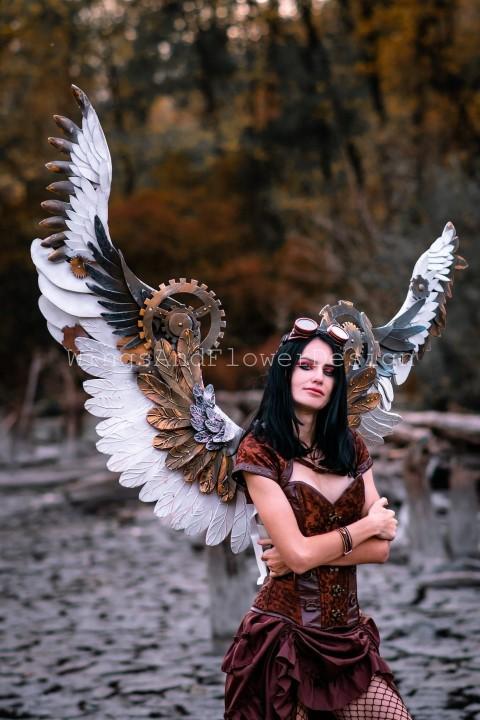 Steampunk biomechanical Wings (Small)