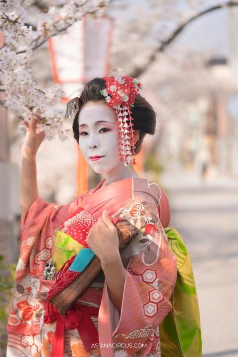 Tsumami Kanzashi - traditional japanese hobbies (Small)